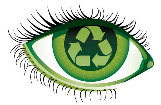 Companies with a green Vision