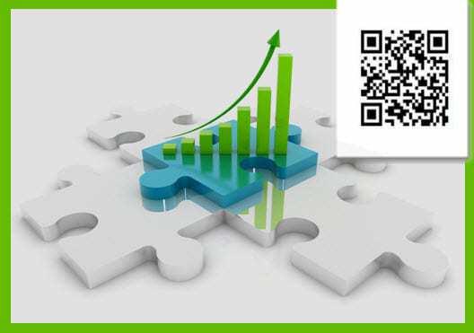 QR Code Statistics