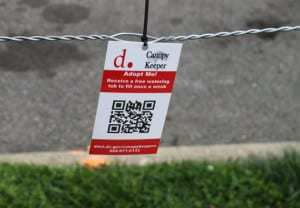 QR code allows smartphone users to adopt a tree in D.C