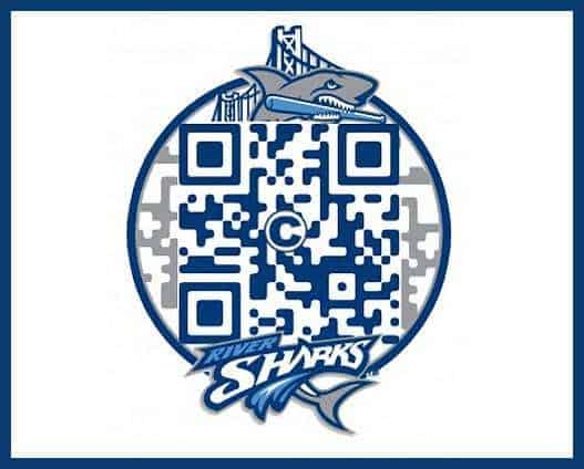 QR Code with Logo