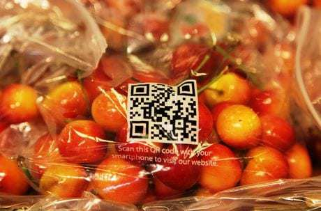 QR code tracing fruit