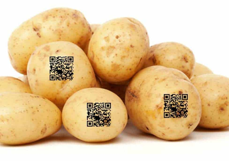 QR codes potatoes vegetables