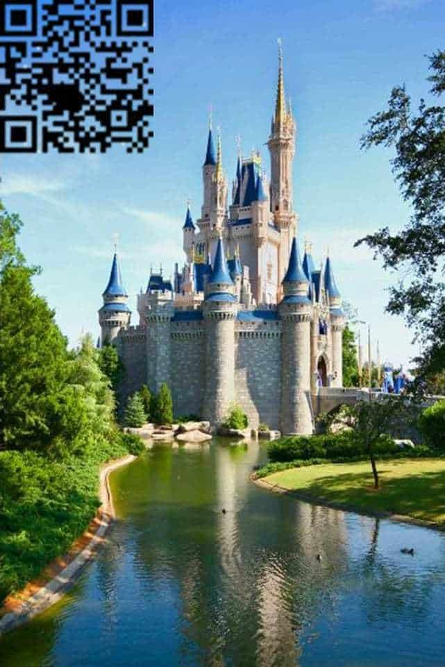 disney mobile payments