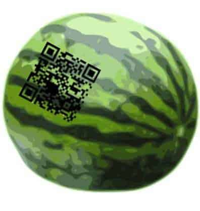 qr codes watermelon fruit