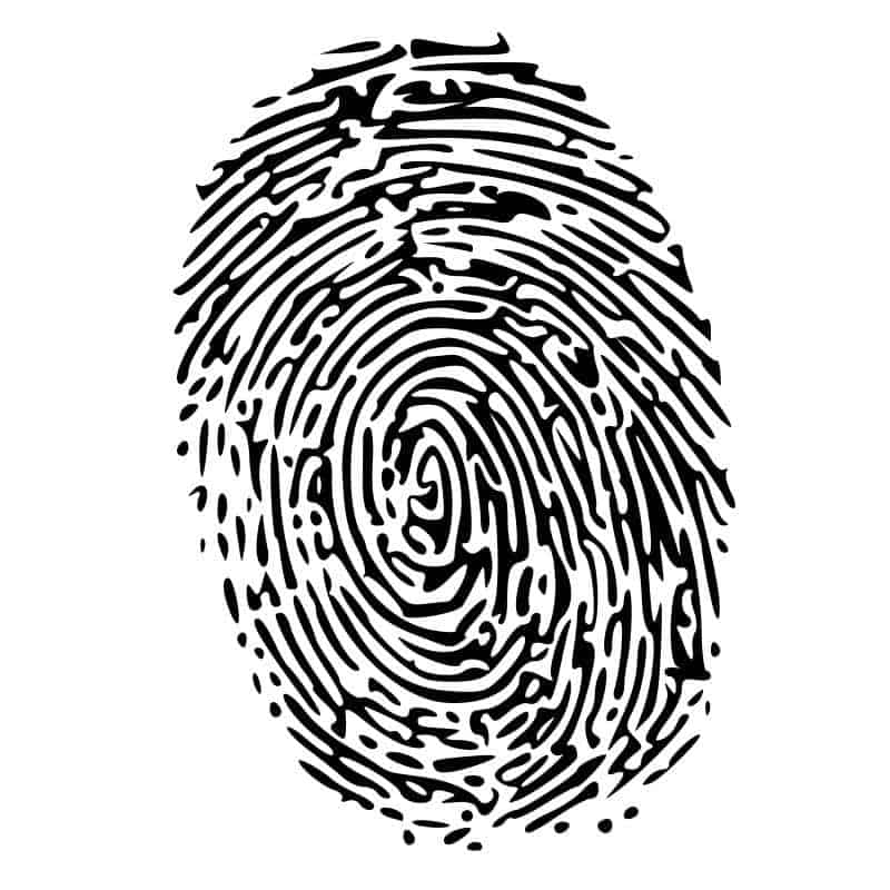 fingerprint biometrics mobile payments