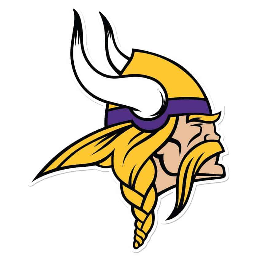 minnesota vikings google glass