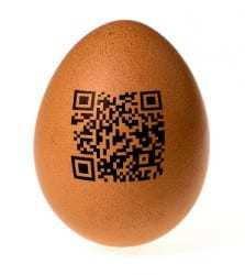 unique qr codes food