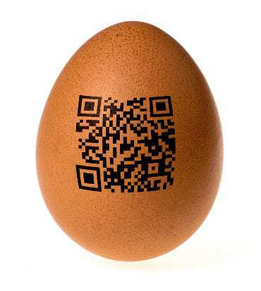 qr code problems eggs food nutrition