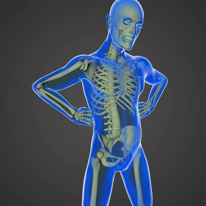 virtual reality anatomy microsoft hololens