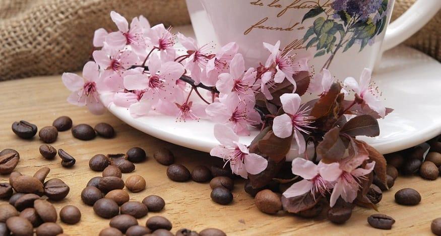 Kona Coffee QR Code - Coffee Beans, Mug and Flowers