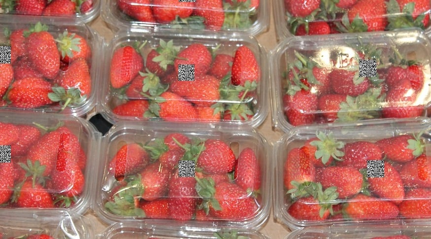 HarvestMark QR code - Packaged strawberries