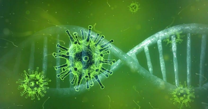 Coronavirus apps - virus - disease