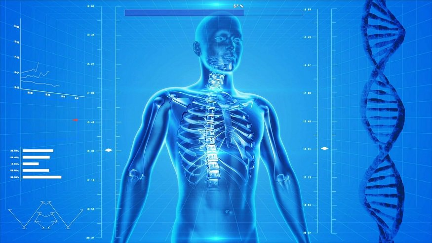 Medical AI - X-Ray - Human Body