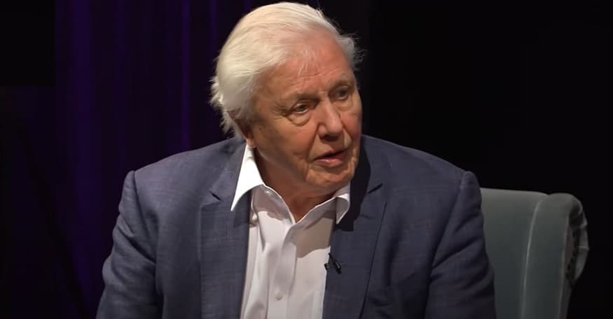 David Attenborough Hologram - David Attenborough Interview YouTube